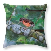 Maybe Tomorrow Throw Pillow by Mary Hughes