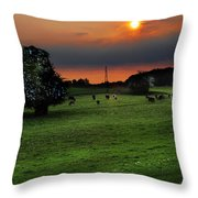 Meadow Field Throw Pillow by Svetlana Sewell