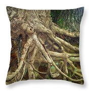 Medusa Throw Pillow by Cricket Hackmann
