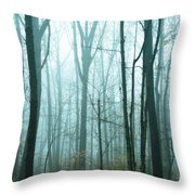 Misty Forest Throw Pillow by John Greim