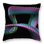Mobius Throw Pillow by John Edwards