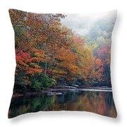 Monongahela National Forest Throw Pillow by Thomas R Fletcher
