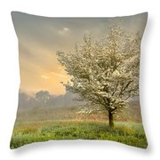 Morning Celebration Throw Pillow by Debra and Dave Vanderlaan
