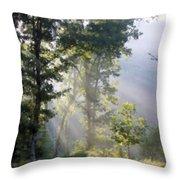 Morning Sun Throw Pillow by Kristin Elmquist