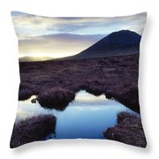 Mount Errigal, County Donegal, Ireland Throw Pillow by Gareth McCormack