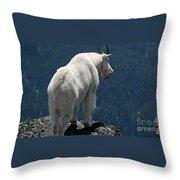 Mountain Goat 2 Throw Pillow by Sean Griffin