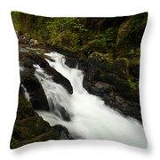 Mountain Stream Throw Pillow by Mike Reid