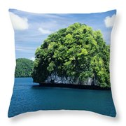 Mushroom-shaped Island Throw Pillow by Dave Fleetham - Printscapes