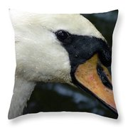Mute Swan Close-up Throw Pillow by Al Powell Photography USA