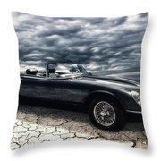 my friend the Jag Throw Pillow by Joachim G Pinkawa