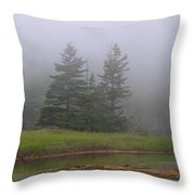 Mystical Acadia National Park Throw Pillow by Juergen Roth