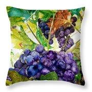Napa Harvest Throw Pillow by Lance Gebhardt