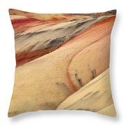 Nature's Palette Throw Pillow by Mike  Dawson
