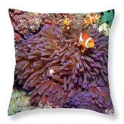 Nemo's Home Throw Pillow by Joerg Lingnau