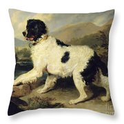 Newfoundland Dog Called Lion Throw Pillow by Sir Edwin Landseer