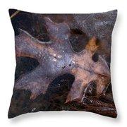 Oak Preservation Throw Pillow by Adam Long