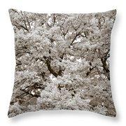 Oaks Throw Pillow by Frank Tschakert