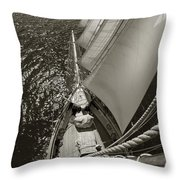 Ocean View Throw Pillow by Robert Lacy