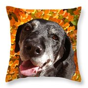 Old Labrador Throw Pillow by Amy Vangsgard