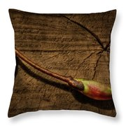 Old Meets New Throw Pillow by Evelina Kremsdorf