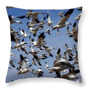 On A Mission Bosque Del Apache Throw Pillow by Kurt Van Wagner