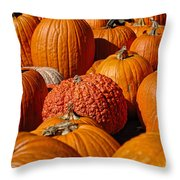 One Of A Kind Throw Pillow by Edward Sobuta