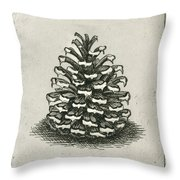 One Pinecone Throw Pillow by Charles Harden