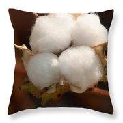 Open Cotton Boll Throw Pillow by Douglas Barnett