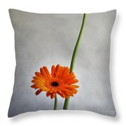 Orange Gernera Throw Pillow by Bernard Jaubert