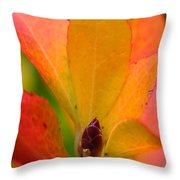 Orange Leaves Throw Pillow by Juergen Roth