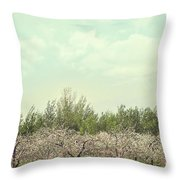Orchard of apple blossoming tees Throw Pillow by Sandra Cunningham