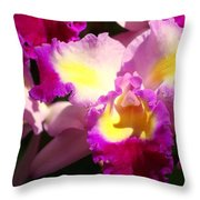 Orchid 1 Throw Pillow by Marty Koch