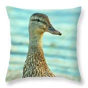 Oscar le canard Throw Pillow by Aimelle