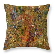 Paint Number 25 Throw Pillow by James W Johnson