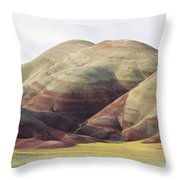 Painted Hills Throw Pillow by Greg Vaughn - Printscapes