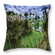 Palm Desert Sky Throw Pillow by Blake Richards