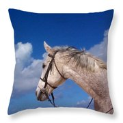 Pancho Throw Pillow by Mary-Lee Sanders