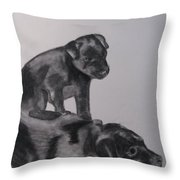 Patterdales Throw Pillow by Amanda Burek