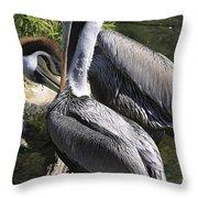 Pelican Duo Throw Pillow by Deborah Benoit