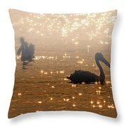 Pelican Sunrise Throw Pillow by Mike  Dawson
