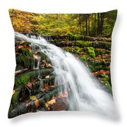 Pennsylvania Autumn Ricketts Glen State Park Waterfall Throw Pillow by Mark VanDyke