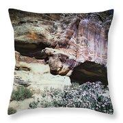 Petra, Transjordan: Cave Throw Pillow by Granger