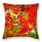 Photo Synthesis Throw Pillow by Diane E Berry