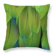 Piha Oe I Ka Maikai Throw Pillow by Sharon Mau