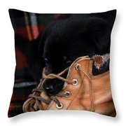 Pillow Throw Pillow by Skip Willits