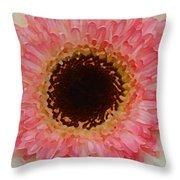 Pink And Brown Gerber Center Throw Pillow by Amy Vangsgard