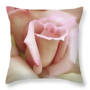 Pink And Ivory Rose Portrait Throw Pillow by Jennie Marie Schell