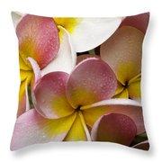 Pink Frangipani Throw Pillow by Avalon Fine Art Photography