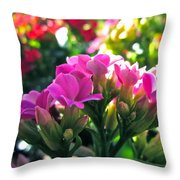 Pink In The Winter Throw Pillow by Gwyn Newcombe