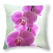 Pink Orchids Throw Pillow by Kicka Witte - Printscapes
